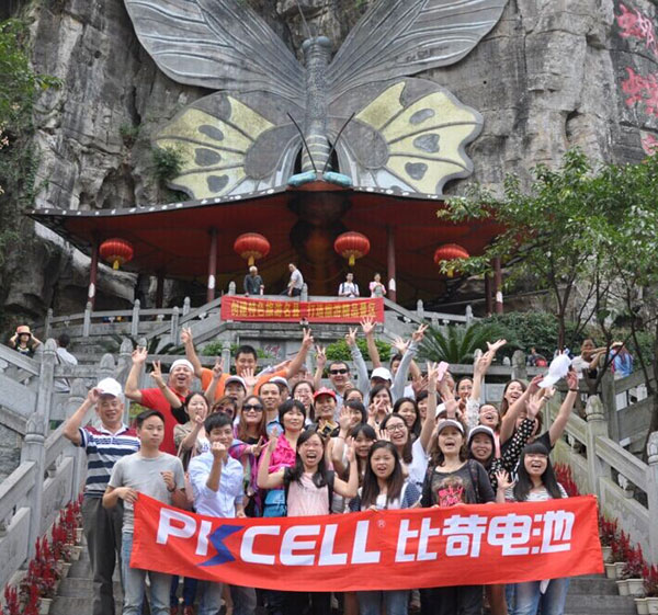 2014 PKCELL company travel